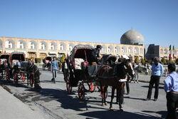 Naghs Jahan Horses