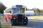 CHG 540 Leyland Bus at NCMM 09 - IMG 5258