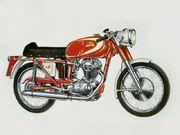 Ducati mach1 800