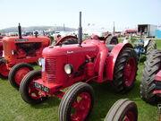 David Brown Cropmaster - KDM 740 at Llandudno 08 - P5050137