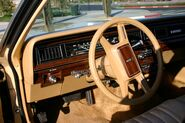 1982 country squire interior