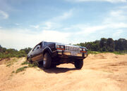Eagle dirt 02