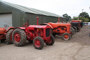Roger Desborough - Cheffins sale tractor lineup (row 3) - Oct 2013 - IMG 1884