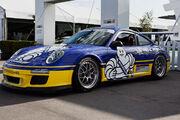 Michelin Porsche 997 GT3 Cup (Porsche Rennsport Reunion IV)