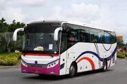 SunLong SLK6126CNGB in Pattaya