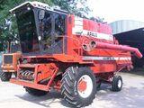 Araus 530 Gigante/2