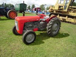 Massey Ferguson 35-Restored-Driffield-P8100562