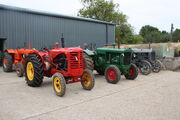 Roger Desborough - Cheffins sale tractor lineup (row 2) - Oct 2013 - IMG 1885