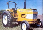 White American 60 (yellow)