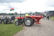 Massey Ferguson 135 and MF 11 spreader at Oswestry 2011 -IMG 0885