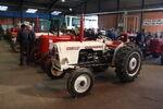 David Brown 770 Selectamatic (MYD 406E) at Somerset 2013 - IMG 6887