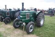 Field Marshall 4187 - SII - AEC 8 - (39) at Carrington 2011 - IMG 6401