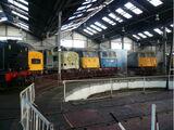 Barrow Hill Engine Shed