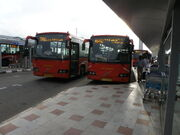 BIAL Volvo buses