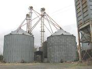 Grain elevator8089