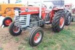 MF 165 - GTA 347D (138) at Hollowell 2010 - IMG 4300