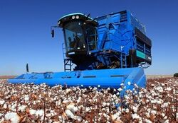 Montana (Brazil) 2826 cotton picker - 2012