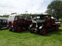 Albion trucks at a show