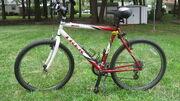 2002 Trek 800 Sport