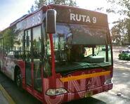 Pumabus9