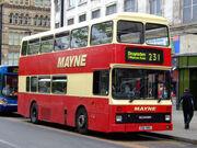 Mayne Coaches 12
