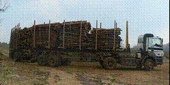 Timber hauling