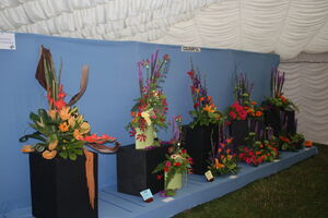 Bakewell show Floral tent 09 - IMG 2585