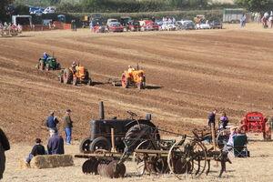 Little Casterton working field 09 - IMG 1649