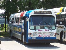 New York Bus Service GMDD 1502.jpg