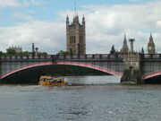 London Duck under Lambeth Bridge