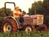 White 31 Field Boss