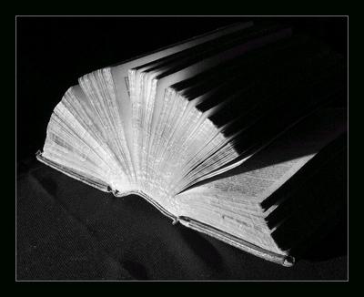 Plik:Book.jpg