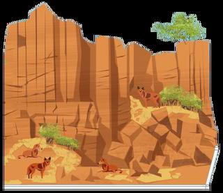 Dingo Kliffen