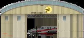 Plane Hangar
