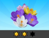 Achievement Crocus II