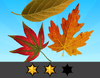 Achievement Autumnal II