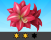 Achievement Amaryllis II