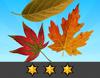 Achievement Autumnal III