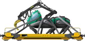 Macro Scorpion