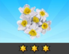 Achievement Daffodil III