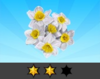Achievement Daffodil II