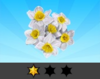 Achievement Daffodil I