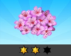 Achievement Cherry Blossom II