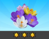 Achievement Crocus III