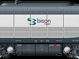 753 Bison
