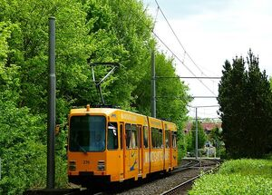 Dornsheimer Weg lijn50 M
