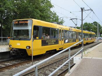 Auwiesen U14 DT8 2