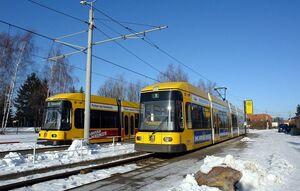 Hellerau lijn8