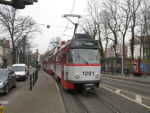 Zoo lijn3 T4D