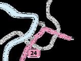 Lijn 24 (Antwerpen)